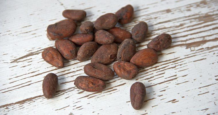 Le cacao cru
